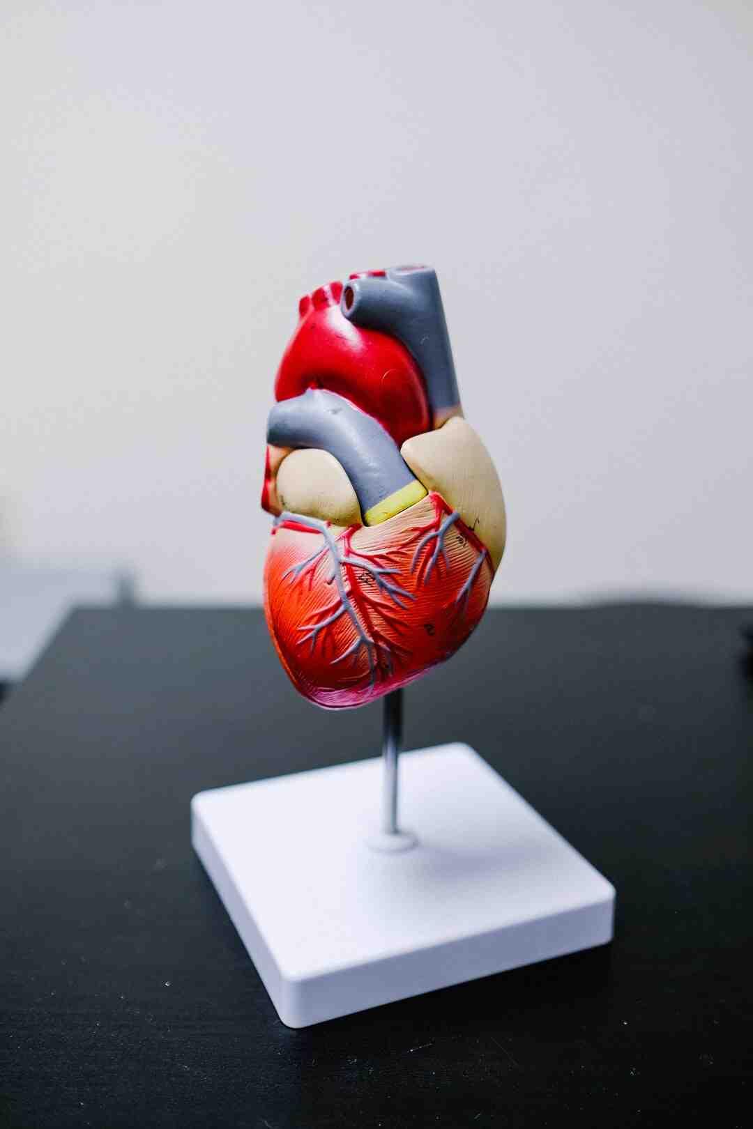 Quel regime contre le mauvais cholesterol