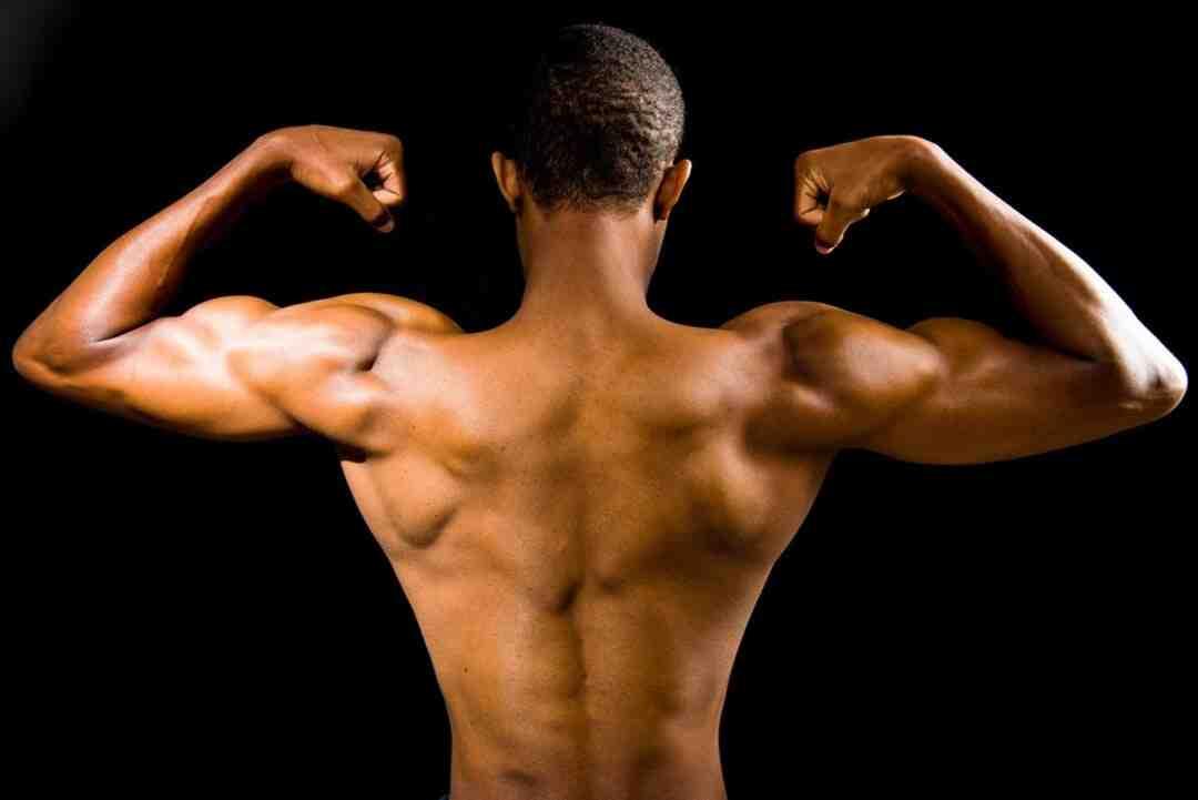 Comment se muscler vite les bras ?